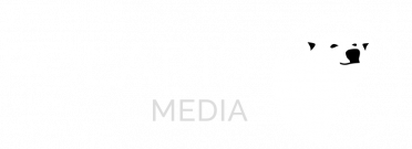 Polaris-logo_transparent-1